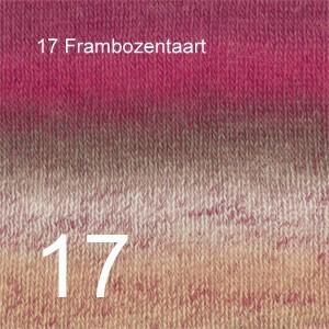 Delight 17 Frambozentaart