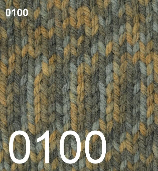 Phildar Rapido Lichen 0100