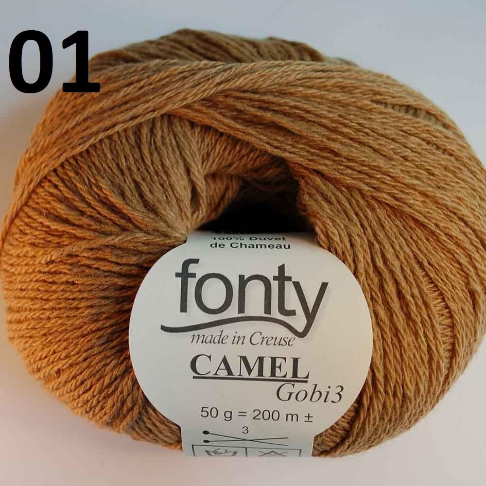 CamelGobi 31